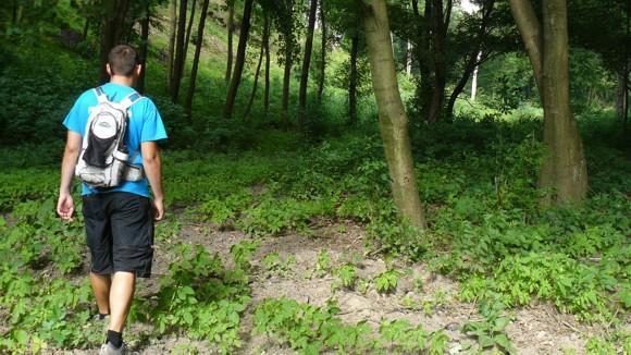 Véménd-Somberek-Erdősmárok-Kátoly túra